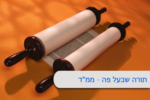 "Picture of י""ז בתמוז- שיעורי תורה"